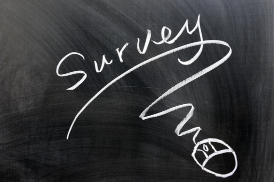 Online Survey, Website questionnaire